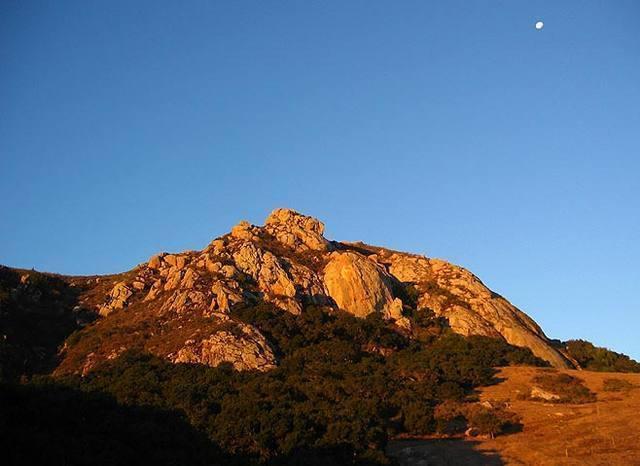 Bishop Moon.<br> Photo Tom Slater