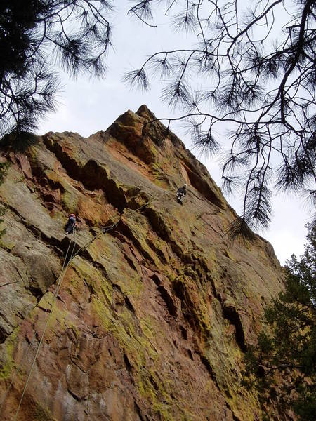 Looking at the moves to the 3rd bolt. This was my high point. I downclimbed to Luke, we rapped, and then TR'd it.<br> Photo by Chuck Graves.