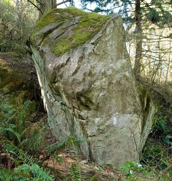 The South face of the Titelist boulder.