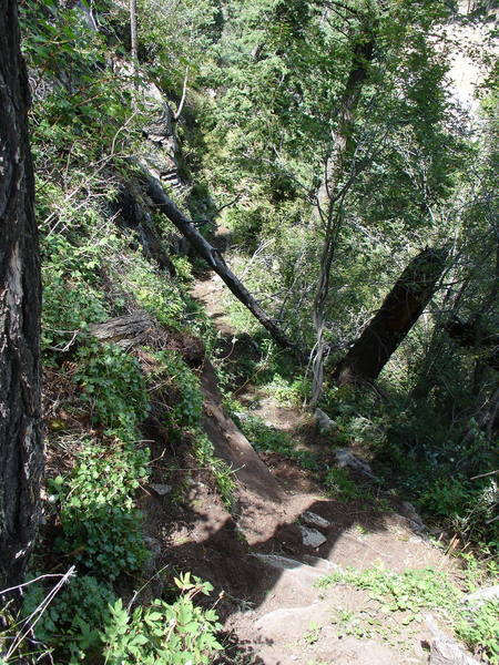This photo looks down the North Trail just below the steps that lead to the level of Ledge One. The North Trail is in excellent condition as of 7 August 2006.