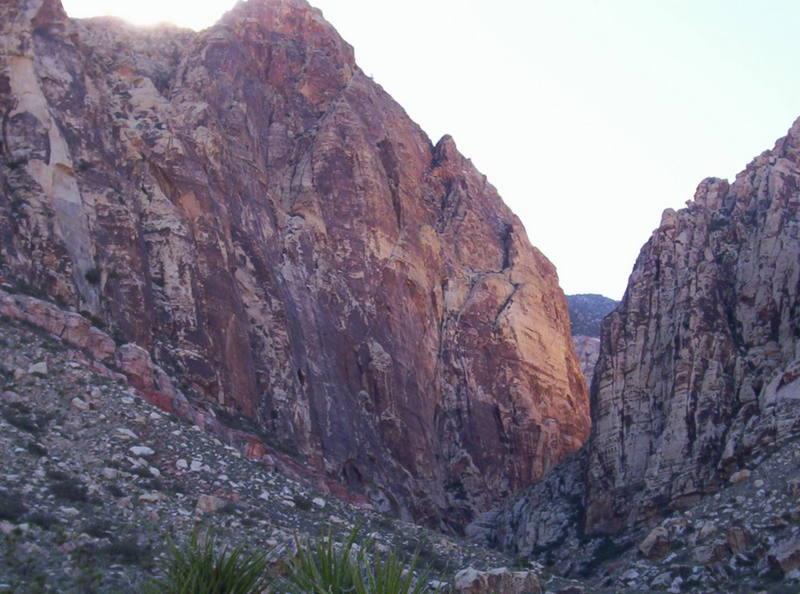 the gorgeous black velvet canyon