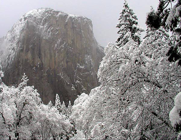 EL Cap, Winter.<br> Photo by Blitzo.