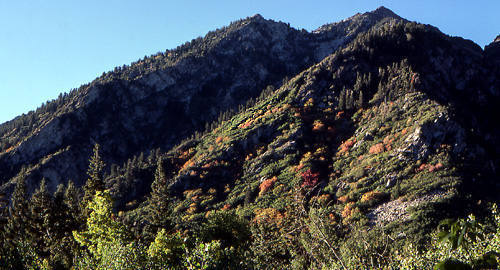 Wasatch, Autumn.<br> Photo by Blitzo.