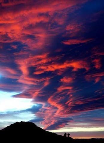 Joshua Tree sunset.<br> Photo by Blitzo.