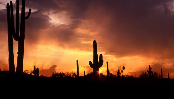 Another Arizona sunset.<br> Photo by Blitzo.