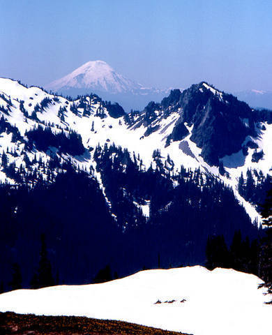 Mt St Helens, before it blew it's top.<br> From Mt Rainier, 1976.<br> Photo by Blitzo.