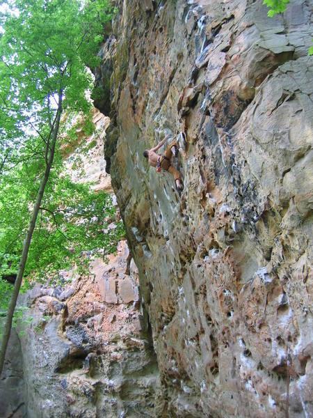 Climber on Tissue Tiger.