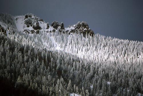 Winter in the Colorado Rockies.<br> Photo by Blitzo.