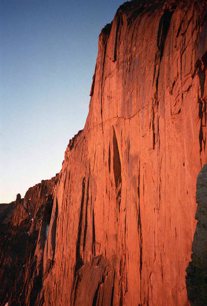 The Diamond, illuminated by 4am alpenglow, seen from the bivy at Chasm View. July, 1996.