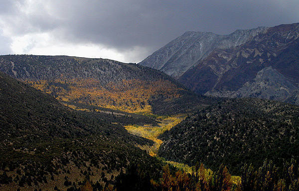 Eastern Sierra-Fall.<br> Photo by Blitzo.