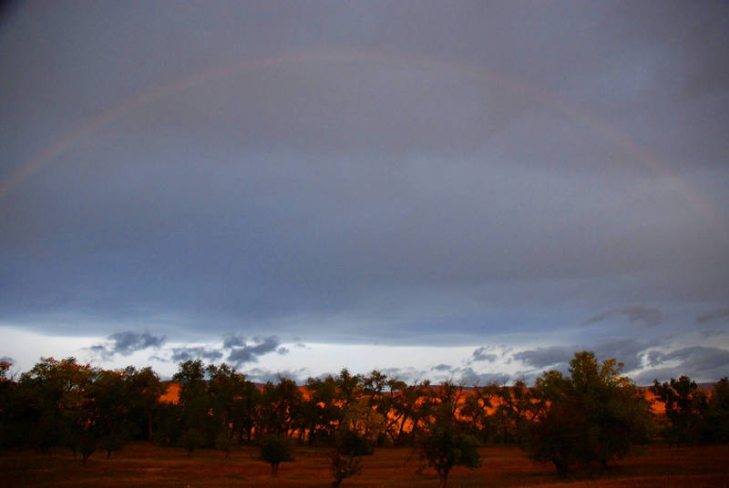 A rainbow on an early fall morning in Lander, WY, just downstreem from the sinks.  Photo by Ian Wolfe
