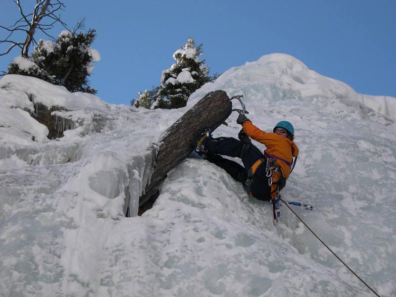 Good stump climbing.