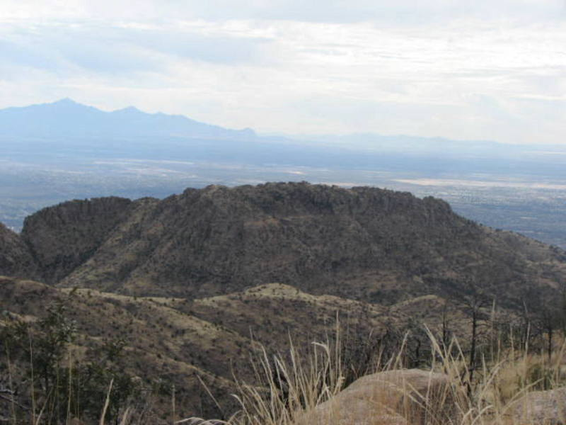 """""""Boothill"""" viewed from the """"Bug Spring Trail."""""""