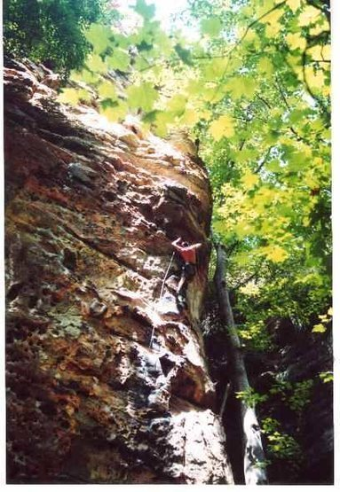 Fuzzy Undercling- Sept. 2000
