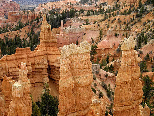 Bryce Canyon.<br> Photo by Blitzo.