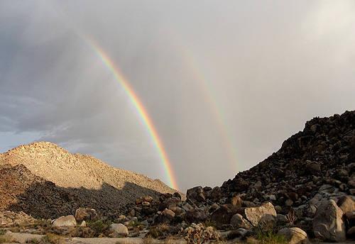 Rainbows. <br> Photo by Blitzo.
