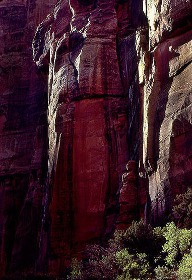 Cliff detail-Zion.<br> Photo by Blitzo.