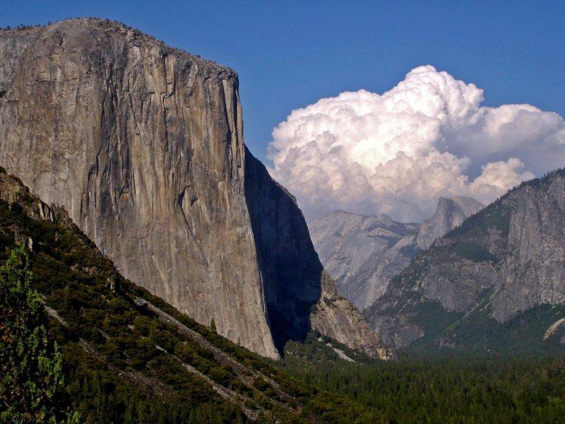 West face of El Cap <br>