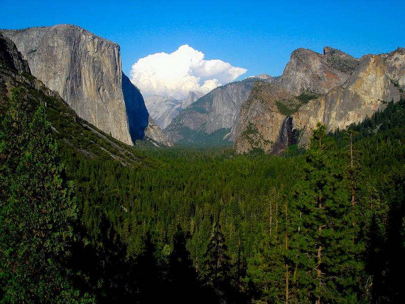Classic Yosemite Valley view.