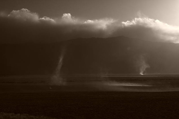 Dust devils careening a few miles north of Big Pine