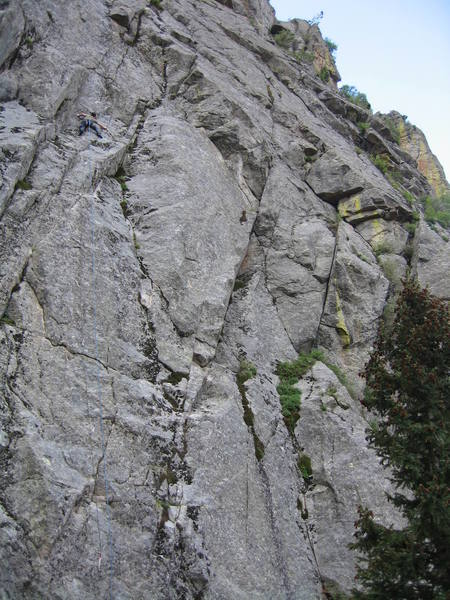 Mike R high on the no-longer-mossy route. The clean, diamond-shaped slab to his right is the crux of Consilience.