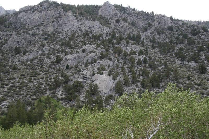 Iris Slab overview.   A small slab on a big hillside.