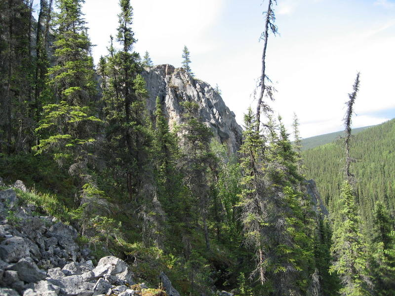 Crackland as seen from approach trail, backside of East Grapefruit Dome.