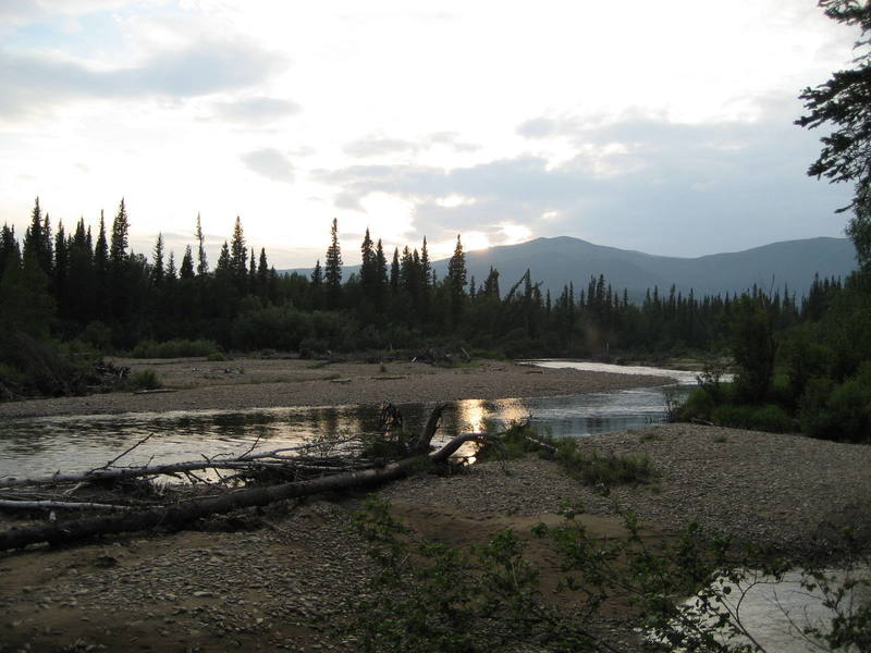 The North fork of the Chena River as viewed from the approach trail 11:30 AK time.