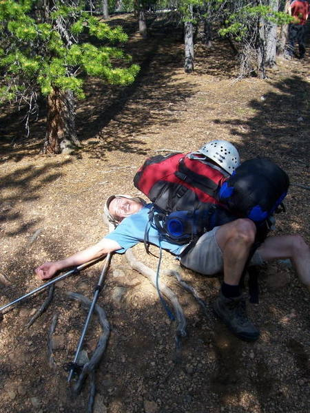 Eaten alive by a bear sized backpack