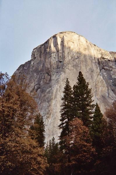 El Cap (duh!) -- Taken with a disposable camera.