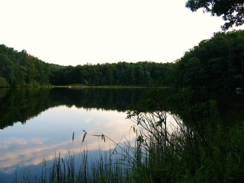 Summer evening at Boley Lake, Babcock State Park (just a few miles from NRG).