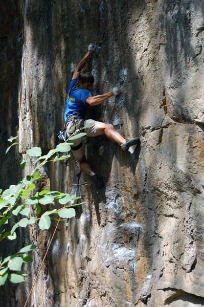 Michael Martin trying oh so hard on the crimpy badness of this route.