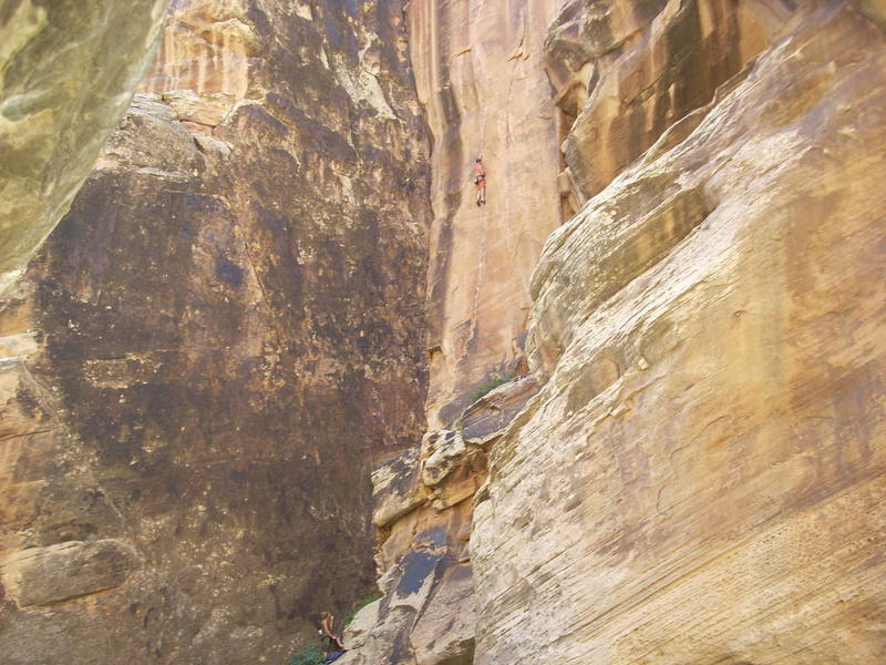 Winslow wall, Hanging Judge