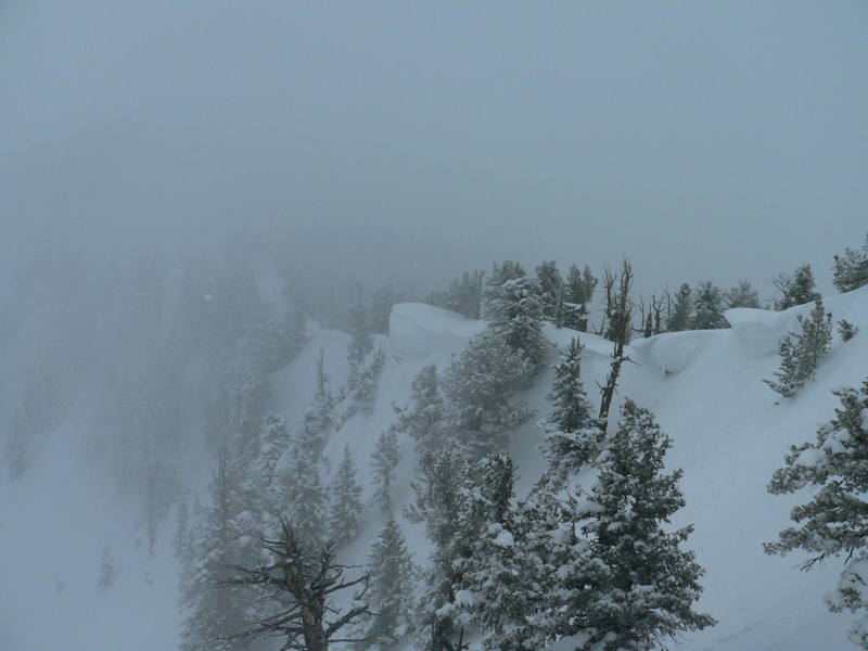 White-out in the Wasatch back country!