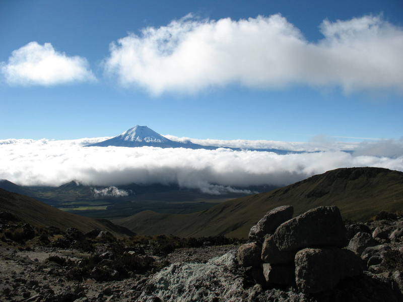 Cotopaxi seen from low on Illiniza Norte.