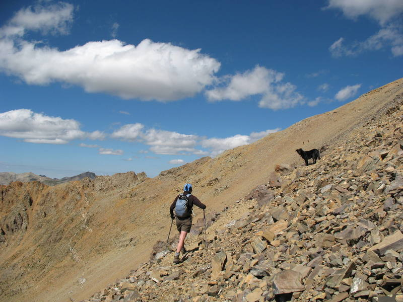 Nancy Bell and her faithful companion, Jack, near the top of Electric Pass, Elk Range.
