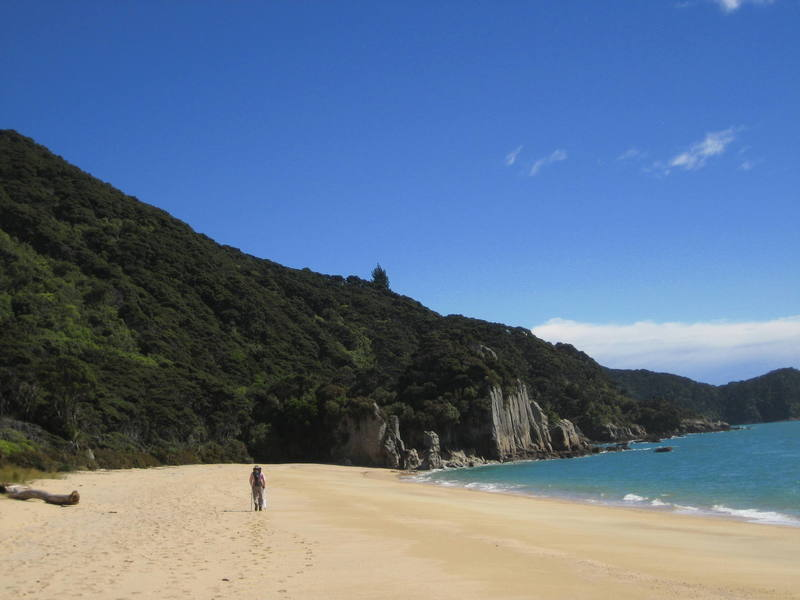 Great Walk #2:  The Abel Tasman Coast Track near Nelson.  We had this place to ourselves, but in the high season this beach and many others along the track are swarming with hikers, kaykers, fishermen, motorboaters, etc...