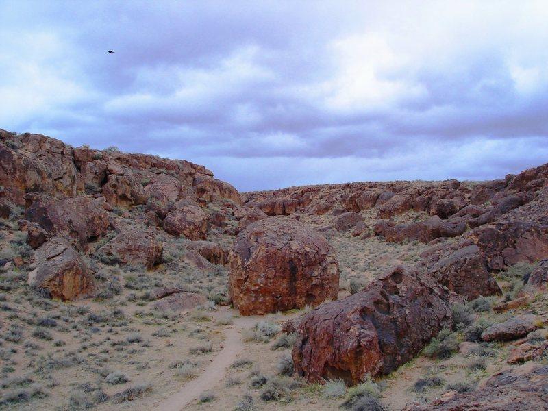 """Looking up canyon at the Serengeti Boulder (center), featuring """"Serengeti"""" v5"""
