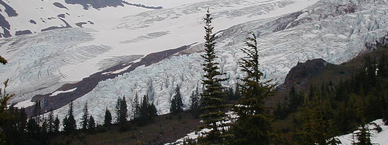 Coleman Glacier from trail to Bivvy.<br> <br> Photo by Kirk Miller.