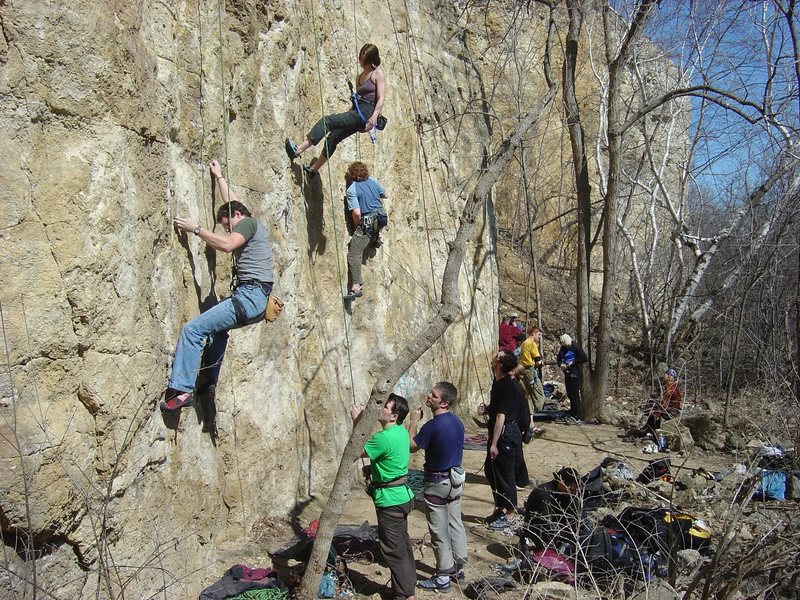 This is the Cyclops Wall from the far end.  Gray shirt (Joel) is on Wasp Mentality.  Tank top (Jordana) is on Work Ethic.  Blue shirt (Jay) is on Suicide Squeeze.  Yellow shirt is standing at the base of Urban Chunks.  In between blue shirt and yellow shirt are Cyclops and Sleeping Bat.  Big Rocks Remembered and those climbs are around the corner past yellow shirt.  Holger is obviously not belaying properly with his 40 year old figure 8 and the dark blue shirt belayer, I think, is high as a kite.  Taken April 2004.