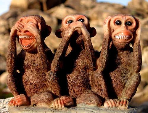 High Desert Rock Monkeys.<br> Photo by Blitzo.