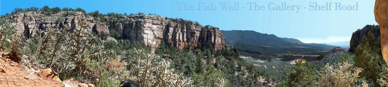 The Fish wall in Shelf Road