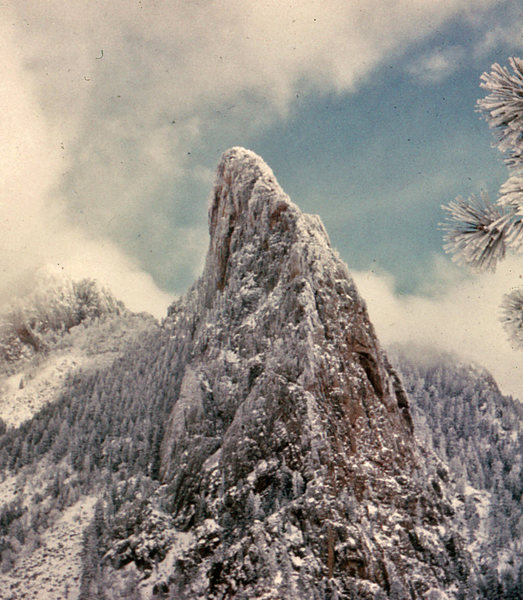 Thumb in winter