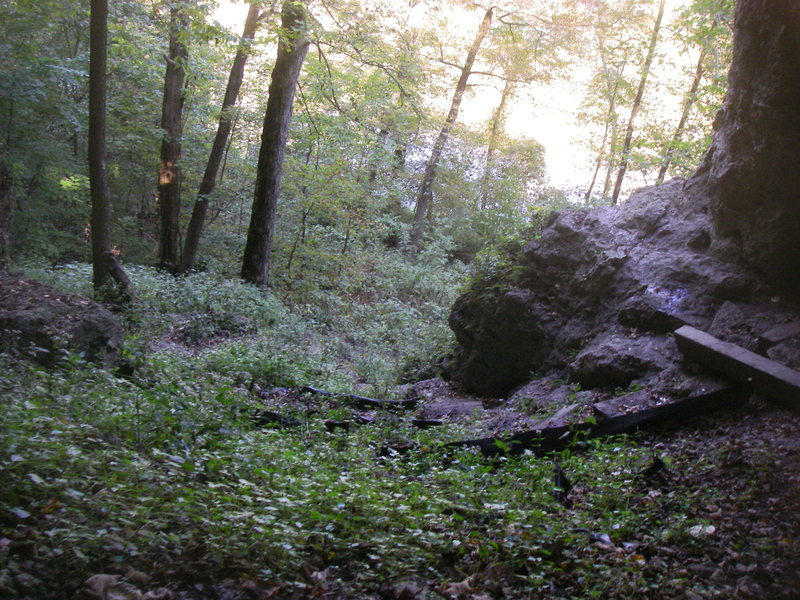 thick ground cover flourishes at pictured rocks