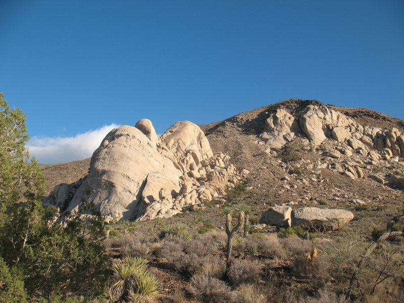 The lonely Meadows Boulder with Saddle Rocks and the Cowboy Crags in the background, JTNP.