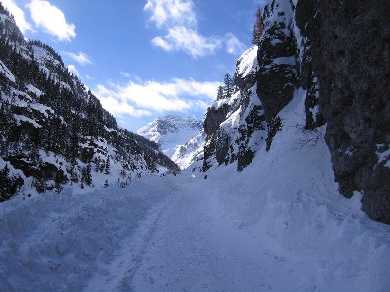 Camp Bird road to Imogene Pass.