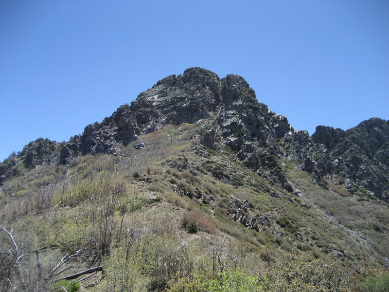 Brown's peak from the saddle