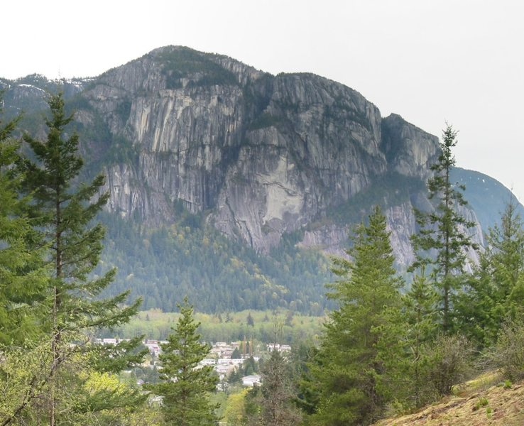 A stitched together panoramic of the north walls of the Chief taken from the loop trail in the Smoke Bluffs just above the far right side of Ronin's Corner.<br> <br> Angel's Crest runs up the edge visible in the middle of the image, just left of the Sheriff's Badge.