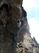 Rock Climbing Photo: Ryan Ricardson heading into the business of Pumpin...