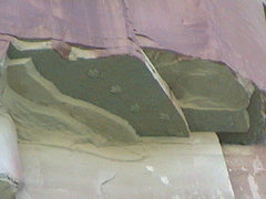 Rock Climbing Photo: dinosaur track under shelf